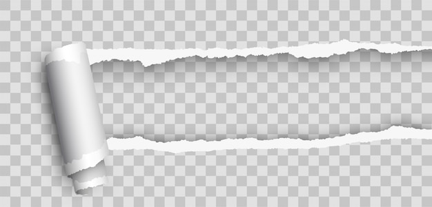 Realistyczny Pusty Zwinięty Papier łzowy. Torn Księga. Realistyczny Rozdarty Papier Z Rolowaną Krawędzią. Zgrywanie Papieru Premium Wektorów
