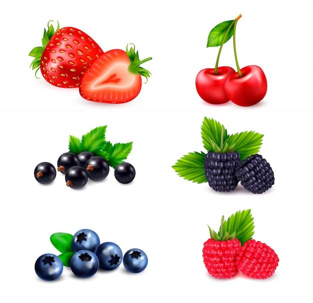 Realistyczny Zestaw Owoców Jagodowych Z Odizolowanymi Kolorowymi Obrazami Jagód Posortowanymi Według Różnych Gatunków Z Cieniami Darmowych Wektorów