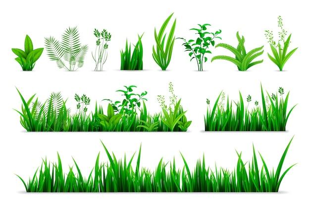 Realistyczny Zestaw Trawy Wiosną. Kolekcja Zielonych świeżych Roślin W Stylu Realizmu Lub Sezonowych Zielonych Ziół Botanicznych W Ogrodzie Premium Wektorów