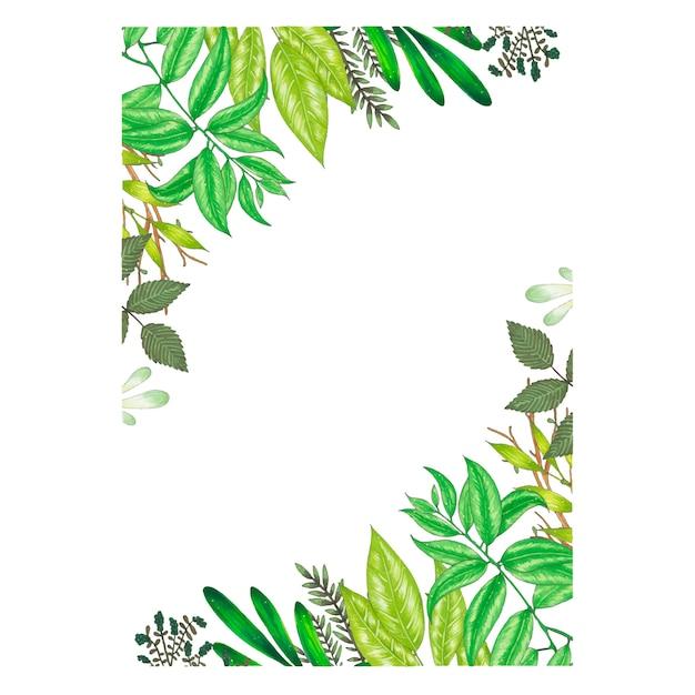 Ręcznie malowana markerem rama z gałązek, gałęzi i zielonych liści abstrakcyjnych Darmowych Wektorów