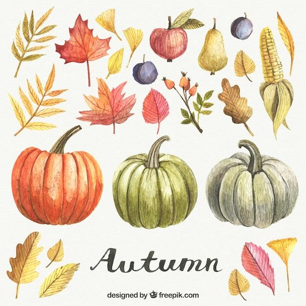 Ręcznie Malowane Elementy Jesień Premium Wektorów