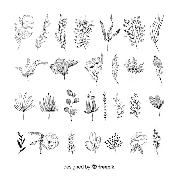Ręcznie Rysować Elementy Dekoracji Kwiatowych Darmowych Wektorów