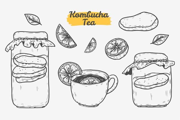Ręcznie Rysowana Herbata Kombucha Darmowych Wektorów