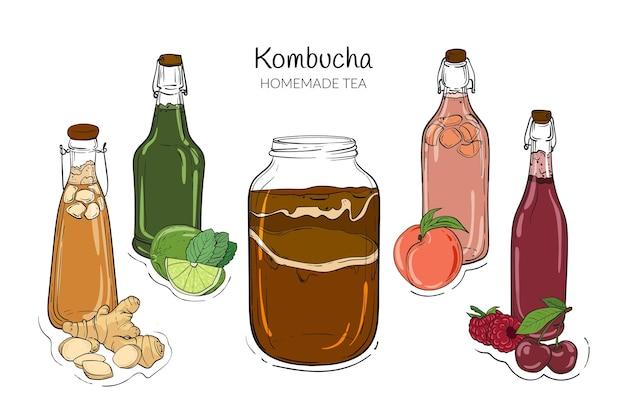 Ręcznie Rysowana Herbata Kombucha Premium Wektorów