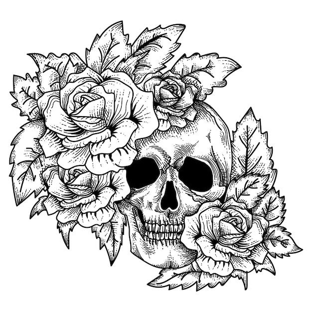 Ręcznie Rysowane Czaszki Z Różami Premium Wektorów