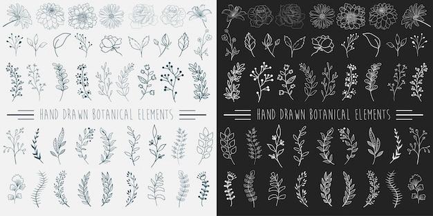 Ręcznie rysowane elementy botaniczne. Premium Wektorów