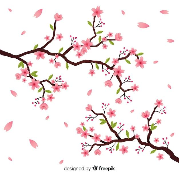Ręcznie rysowane gałąź kwiat wiśni Darmowych Wektorów