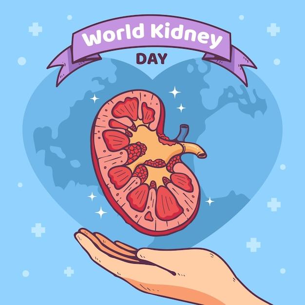 Ręcznie Rysowane Ilustracja Dzień Nerki Darmowych Wektorów