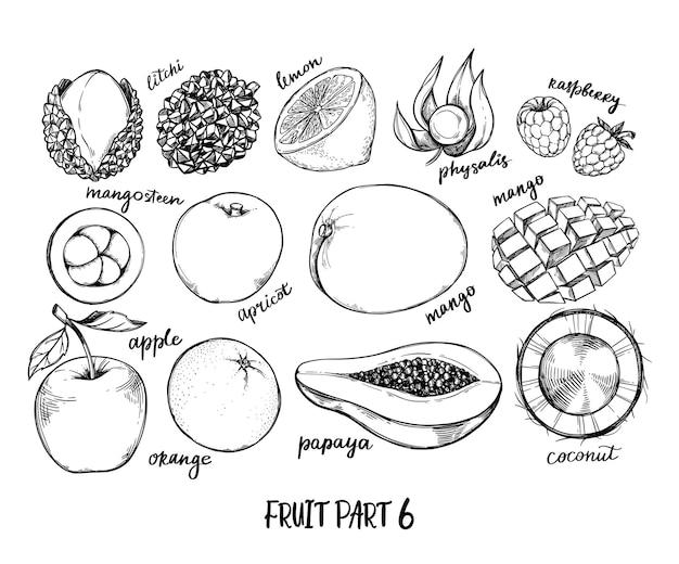 Ręcznie Rysowane Ilustracja - Owoce Tropikalne I Egzotyczne. Elementy Zdrowej żywności. Jabłko, Papaja, Kokos, Mango Premium Wektorów