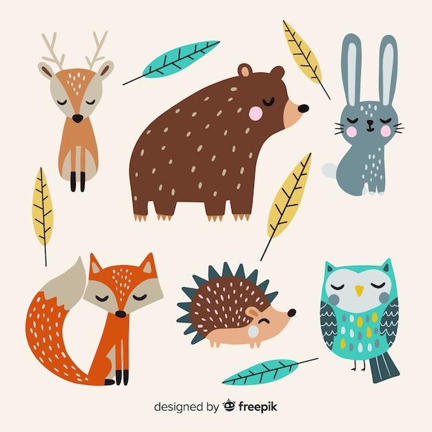 Ręcznie rysowane jesień kolekcja zwierząt leśnych Darmowych Wektorów