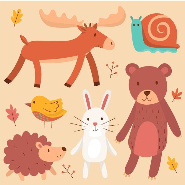 Ręcznie Rysowane Jesienne Zwierzęta Leśne Premium Wektorów