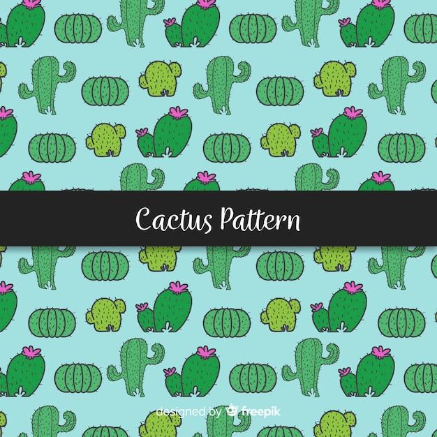 Ręcznie rysowane kaktus wzór tła Darmowych Wektorów