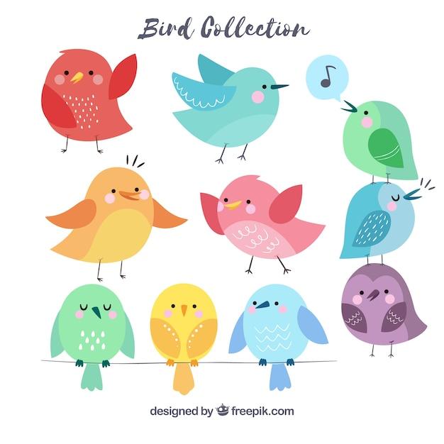 Ręcznie rysowane kolekcja ptaków Darmowych Wektorów
