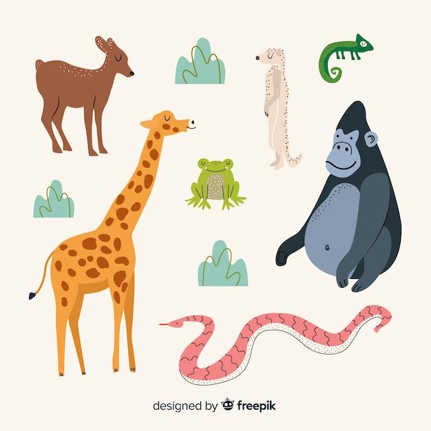 Ręcznie rysowane kolekcja zwierząt tropikalnych Darmowych Wektorów