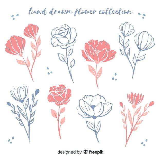Ręcznie Rysowane Kolekcji Kwiatowy Szkice Darmowych Wektorów