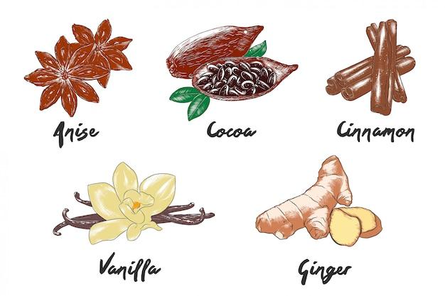 Ręcznie rysowane kolorowe szkice żywności Premium Wektorów