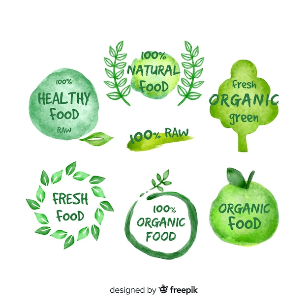 Ręcznie rysowane logo żywności ekologicznej Darmowych Wektorów