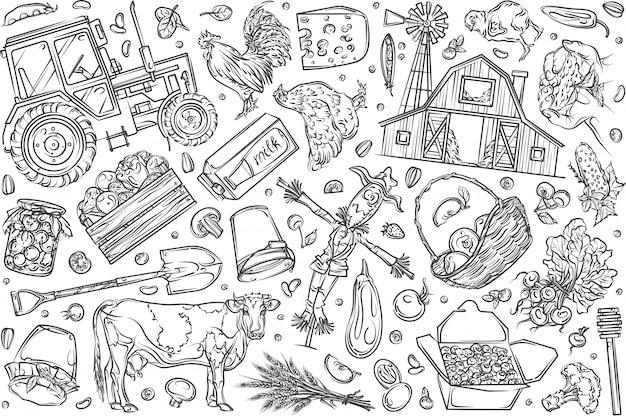 Ręcznie rysowane rolnictwa ekologicznego i żywności zestaw doodle tło Premium Wektorów