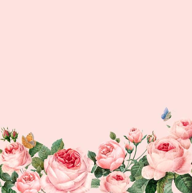 Ręcznie rysowane różowe róże ramki na pastelowe tło różowy wektor Darmowych Wektorów
