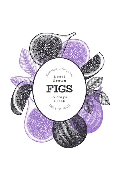 Ręcznie Rysowane Szablon Owoce Figi. Ilustracja Ekologicznej świeżej żywności. Baner Owoców Retro Fig. Premium Wektorów