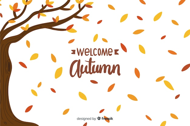 Ręcznie rysowane tła jesień z liśćmi Darmowych Wektorów