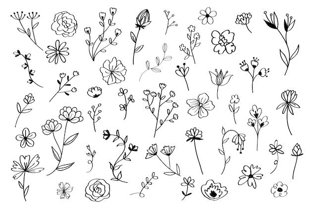 Ręcznie Rysowane Zestaw Kwiatów Darmowych Wektorów