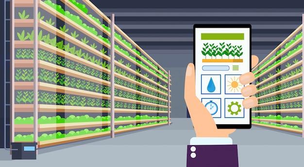 Ręcznie Za Pomocą Aplikacji Mobilnej Inteligentnej Kontroli System Rolnictwa Koncepcja Rolnictwa Ekran Smartfona Nowoczesne Organiczne Hydroponicznych Pionowe Farma Wnętrze Zielone Rośliny Rosnące Przemysł Poziomy Premium Wektorów