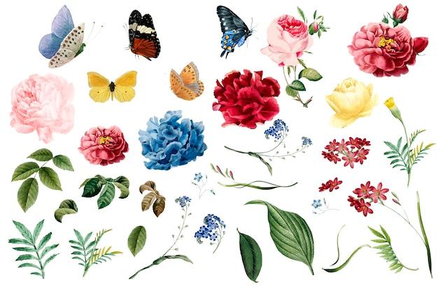 Różne romantyczne ilustracje kwiatów i liści Darmowych Wektorów