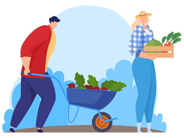 Rolnicy Zbierają Warzywa. Ilustracja Premium Wektorów