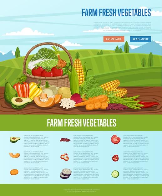 Rolny świeży Warzywo Sztandar Z Wiejskim Krajobrazem Premium Wektorów