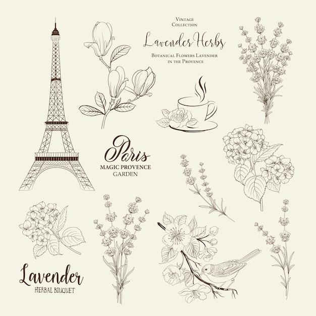 Romantyczna kolekcja paris. Premium Wektorów