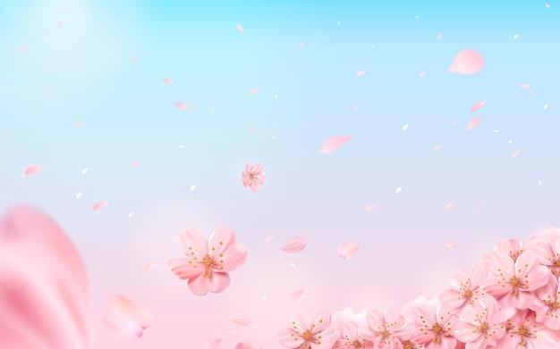 Romantyczny Kwiat Wiśni Tło, Latające Kwiaty Na Różowym I Niebieskim Tle W Ilustracji Premium Wektorów