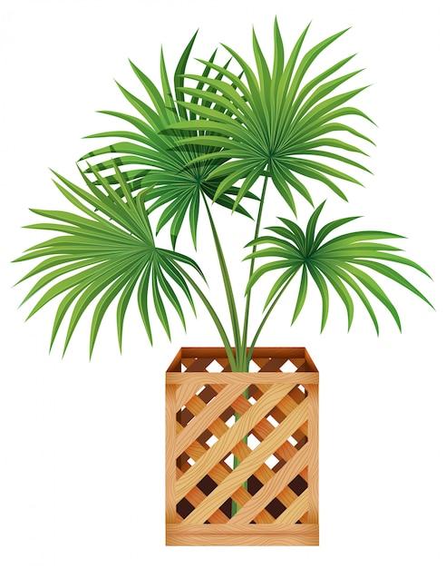Roślina W Garnku Z Ziemią Odizolowywającą Darmowych Wektorów