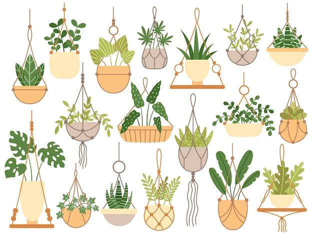 Rośliny w wiszących doniczkach. ręcznie wykonane wieszaki dekoracyjne makramy do doniczki, powiesić rośliny domowe na białym tle zestaw Premium Wektorów
