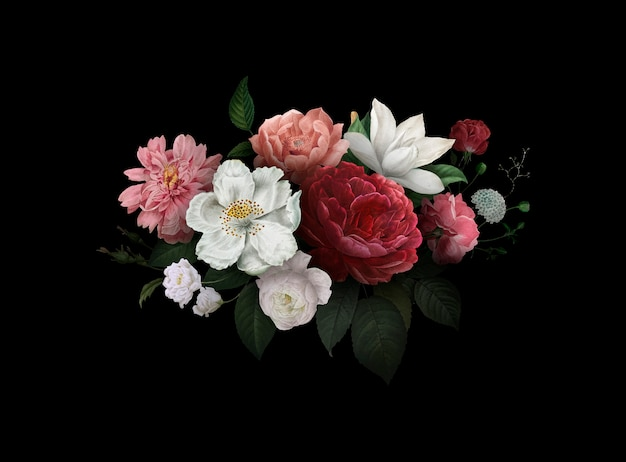 Róże w rozkwicie Darmowych Wektorów
