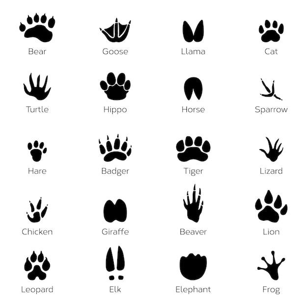 Różne odciski stóp ptaków i zwierząt. wektorowi monochromatyczni obrazki na białym tle Premium Wektorów