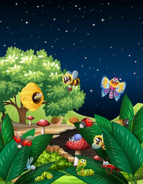 Różne Owady żyjące W Ogrodzie W Nocy Darmowych Wektorów