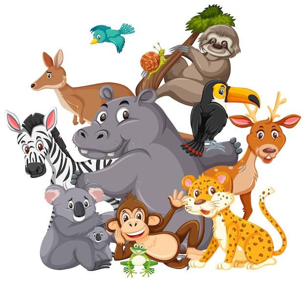 Różne Rodzaje Dzikich Zwierząt Premium Wektorów