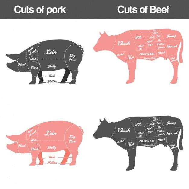 Różne rodzaje mięsa Darmowych Wektorów