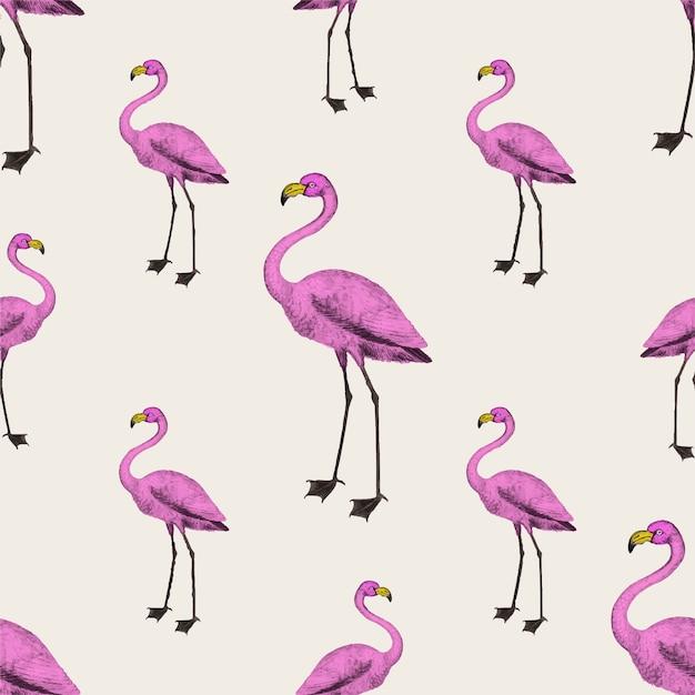 Różowa tapeta flamingo Darmowych Wektorów