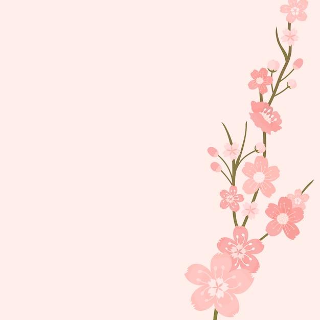 Różowy kwiat wiśni tło wektor Darmowych Wektorów