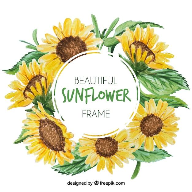 Runda kwiatu ramki z akwareli słoneczników Darmowych Wektorów