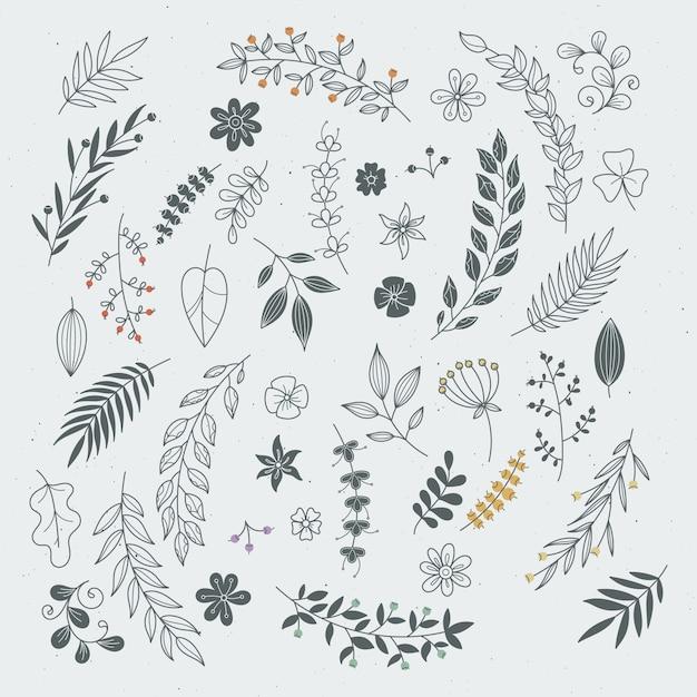 Rustykalne ręcznie rysowane ozdoby z gałęzi i liści. wektorowe kwieciste ramy i granicy Premium Wektorów