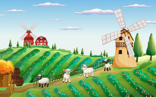 Scena Farmy W Naturze Z Wiatrakiem I Owcami Premium Wektorów