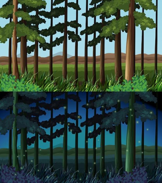 Scena Leśna W Czasie Dnia I Nocy Darmowych Wektorów