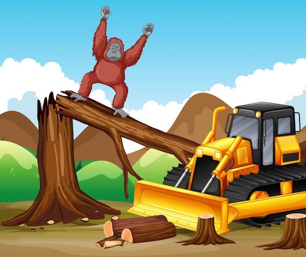 Scena wylesiania z małpą i buldożerem Darmowych Wektorów