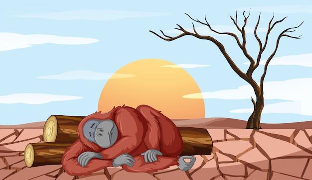 Scena Wylesiania Z Umieraniem Małpy Darmowych Wektorów
