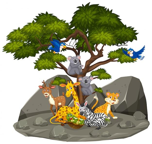 Scena Z Dzikimi Zwierzętami W Skalistej Górze Premium Wektorów