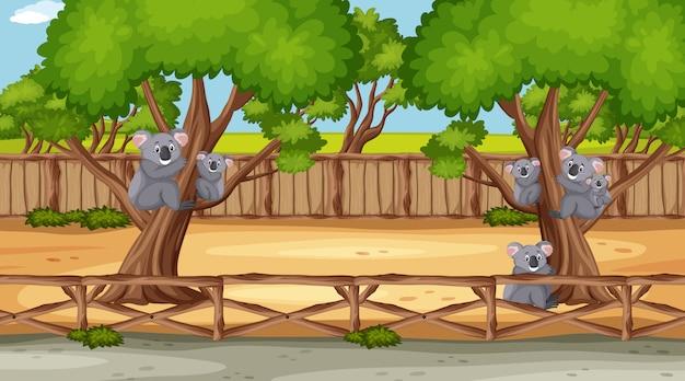 Scena Z Dzikimi Zwierzętami W Zoo W Czasie Dnia Premium Wektorów