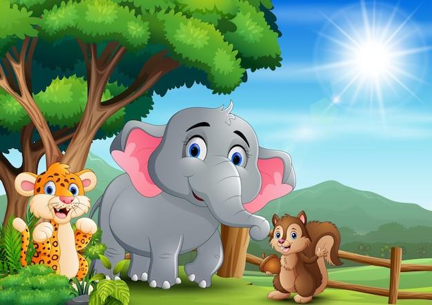 Scena Z Różnego Rodzaju Zwierzętami W Otwartym Zoo Premium Wektorów